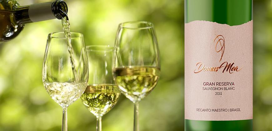 Tudo sobre o Sauvignon Blanc