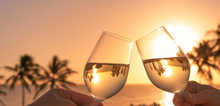 Drinks com Vinho para o Verão